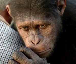 Andy Serkis sera de retour pour prêter ses traits à Caesar