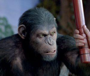 L'Aube de la Planète des singes sortira en mai 2014 aux US