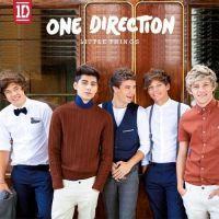 One Direction : pas de jaloux, à chacun sa pochette d'album pour Take Me Home ! (PHOTOS)