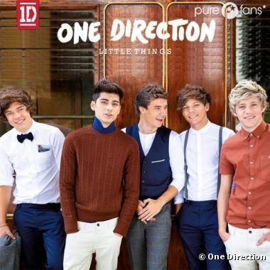 One direction : La pochette de leur prochain single, Little Things
