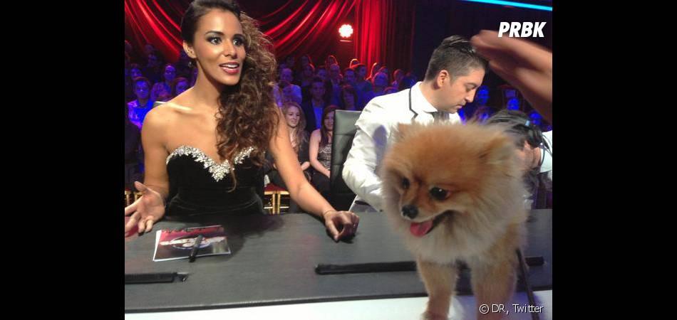 Boo a aussi essayé d'amadouer le jury de Danse avec les stars pour son maître !