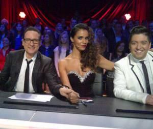 Enfin un peu de sérieux dans le jury de Danse avec les stars !