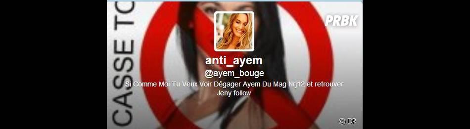 Ayem n'est pas vraiment au top sur Twitter !