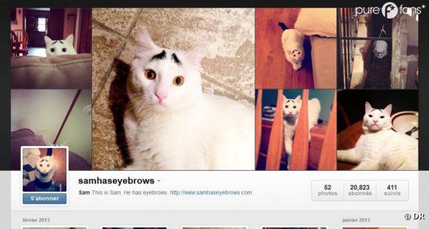 Le compte Instagram de Sam compte plus de 20 000 followers