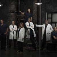 Grey's Anatomy saison 10, Castle saison 6 : nouveaux renouvellements... et annulations