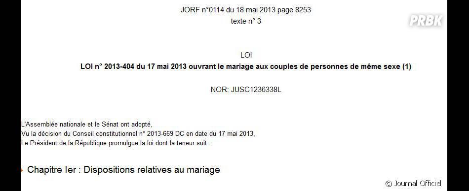 la loi sur le mariage pour tous publi e samedi au journal officiel. Black Bedroom Furniture Sets. Home Design Ideas