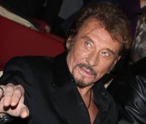 Johnny Hallyday sera accompagné d'une pléiade d'artistes comme Amel Bent ou encore Eddy Mitchell.