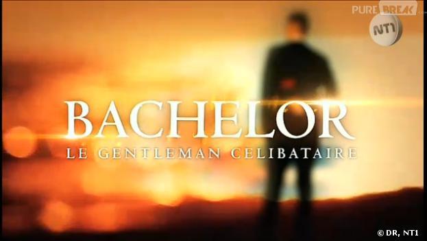 Le Bachelor 2013 : l'émission de retour en 2014