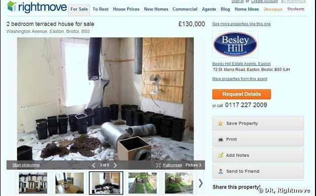 Un agent immobilier britannique a mis une maison à la vente... comprenant une ferme à cannabis