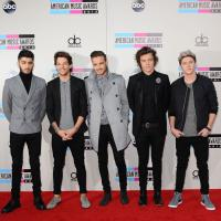 One Direction : tensions entre Harry Styles et les autres membres ?