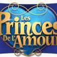 Les Princes de l'Amour à partir du 6 janvier 2014 sur W9