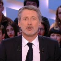 Antoine de Caunes : le tortionnaire du chat Oscar taclé dans le Grand Journal