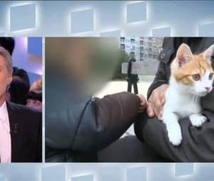 Antoine de Caune attaque Farid de la Morlette, le lanceur de chats marseillais dans Le Grand Journal, le 3 janvier 2013