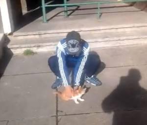 Farid de la Morlette, le lanceur de chats marseillais, a été condamné à 1 an de prison ferme