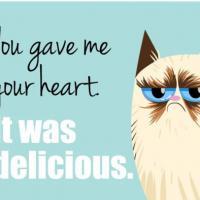 """[FUN] Grumpy Cat vous souhaite une """"horrible"""" Saint-Valentin en 18 cartes"""