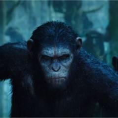 La Planète des singes 2 : 4 choses à savoir