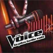 The Voice 3 : votes, chansons, ce qu'il faut savoir sur la demi-finale