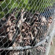 The Walking Dead : les façons les plus badass de tuer des zombies