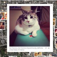 I Know Where Your Cat Lives : la carte du monde.. des photos de chats