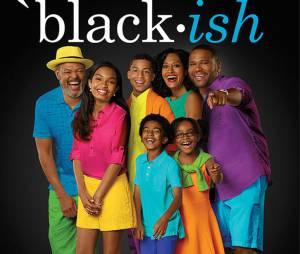 Black-ish : la comédie de ABC aura une saison 1 complète
