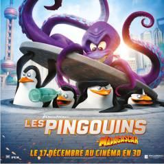 Les Pingouins de Madagascar : 3 (bonnes) raisons de les adopter