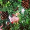 Reese Witherspoon souhaite un Joyeux Noël à ses fans sur Instagram, le 25 décembre 2014