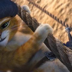 Le Chat Potté : avant le 2 au ciné, une série sur Netflix