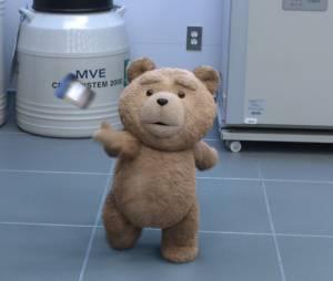 Ted 2 : le nounours déjanté est de retour