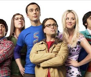 The Big Bang Theory saison 8 : le frère d'Howard débarque