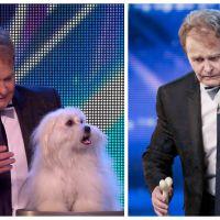 Incroyable Talent : un ventriloque français choque l'Angleterre en faisant parler son chien