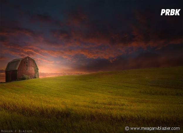 Country Sunset de Meagan V. Blazier