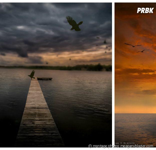 Montages de photos tirées du site meaganvblazier.com