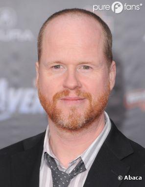 Joss Whedon quitte Twitter... à cause des critiques sur Avengers 2 ?