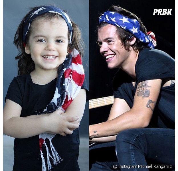 Harry Styles : un garçon de deux ans est son sosie parfait