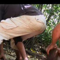 The Island : un caïman et un cochon tués par les candidats, scandale sur Twitter