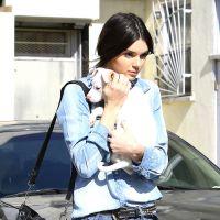 Kendall Jenner : son nouveau bébé ? Un petit chiot trop mignon