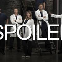 Grey's Anatomy saison 12 : Meredith bientôt en couple ?