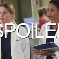 Grey's Anatomy saison 12 : bientôt un nouveau couple à l'hôpital ?