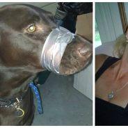 Elle punit son chien en le muselant avec du ruban adhésif : la photo qui choque les réseaux sociaux