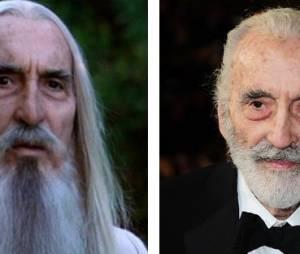 Le Seigneur des anneaux : que sont devenus les acteurs ?