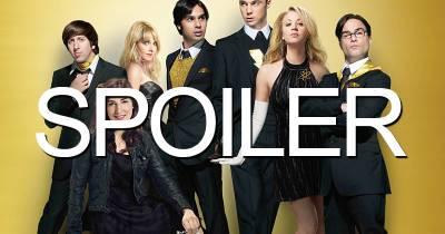 The Big Bang Theory saison 9 : énorme secret sur Bernadette bientôt révélé, nos théories