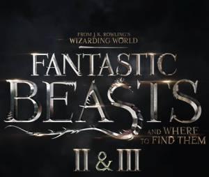 Harry Potter : Les Animaux Fantastiques sera une trilogie au cinéma