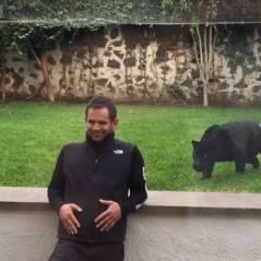 Cet homme se fait attaquer par un jaguar... à coups de câlins et de bisous