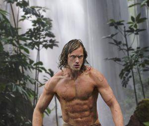 Alexander Skarskard : des absdos en béton pour Tarzan