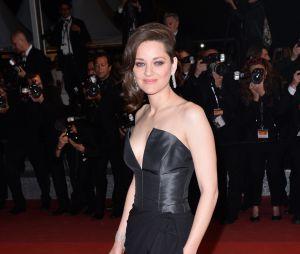 Marion Cotillard : Guillaume Canet la défend et l'encense après les rumeurs sur le divorce des Brangelina