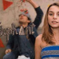 Découvrez Eléphant  et surtout son single !
