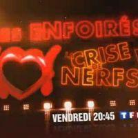 La tournée des Enfoirés 2010 ...  sur TF1 ce soir ... vendredi 12 mars 2010