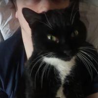 Norman : après la mort de Sergi, il adopte un nouveau chat