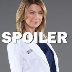 Grey's Anatomy saison 13 : un nouveau crash d'avion pour Meredith ?