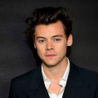 Harry Styles interrompt son concert pour sauver une fan en pleine crise de panique